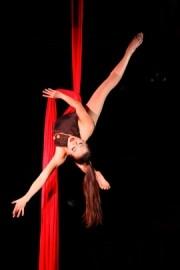 Vivian Tam - Aerialist / Acrobat - Seattle, Washington