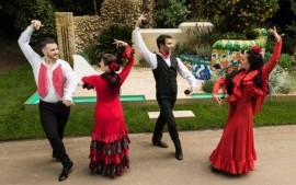 Viva Flamenco - Flamenco Dancer - Wandsworth, London