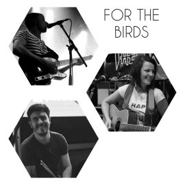 For the Birds - Duo - Ireland, Munster