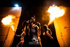 Firestorm Talent and Entertainment  - Aerialist / Acrobat - Orange, California