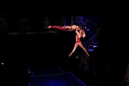 speciality act - Aerialist / Acrobat