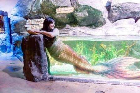 The London Mermaids image