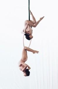 Custom Aerial Hoop Duo Act - Aerialist / Acrobat