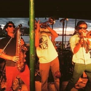 Harsh Armadillo - Funk Band
