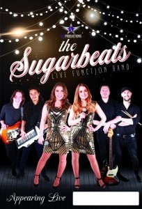 The Sugar Beats 6 to 8 piece Function Band - Function / Party Band