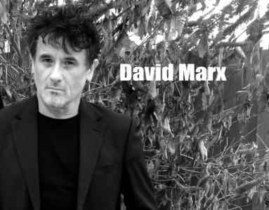 David Marx - Multi-Instrumentalist