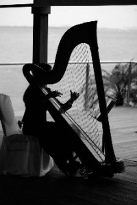 Vicki Kirk - The Wedding Harpist - Harpist