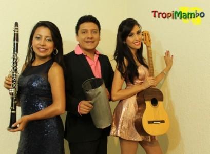 TropiMambo Trio image