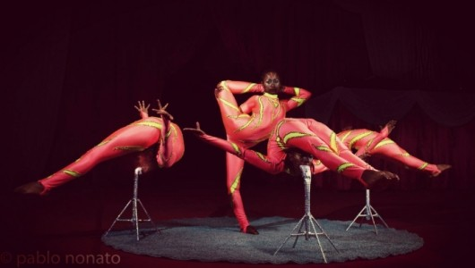Group contortion Queens  - Contortionist