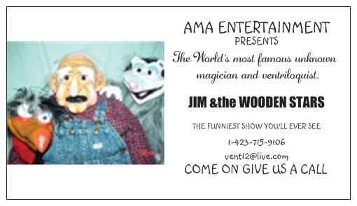 Jim & the Wooden Stars image