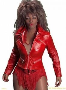 Michelle Marshall- Ulitmate Tina Turner Tribute Show  image