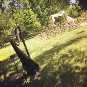 Devon Carpenter - Harpist