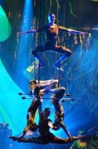 Fallon the Aerial Princess - Aerialist / Acrobat