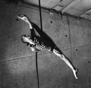 Marian Oh - Aerialist / Acrobat