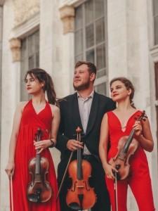 TNT string trio - Violinist
