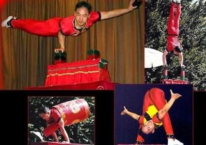 Red Panda Acrobats - Aerialist / Acrobat