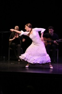 Arte Vivo Flamenco  - Flamenco Dancer