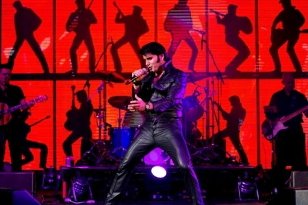 Eddy Popescu  - Elvis Impersonator