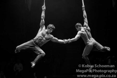 Aerial straps men duo  - Aerialist / Acrobat