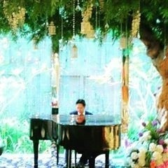 Elhilman (PIANIST and ACCORDIONIST) - Pianist / Keyboardist