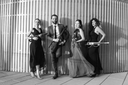Elegance String Quartet - String Quartet