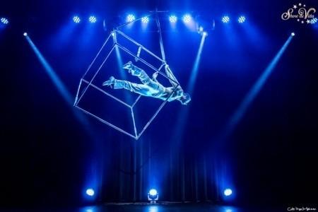Fulcrum Circus Ltd - Aerialist / Acrobat