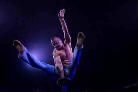 Dima Shine - Aerialist / Acrobat