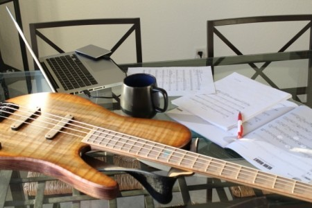 Lauro SMendes - Bass Guitarist
