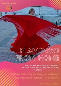 La Candela Flamenco Company - Flamenco Dancer
