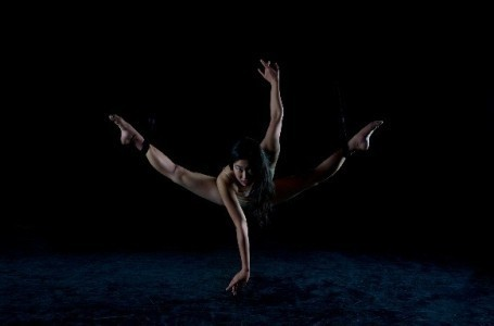Mizuki  - Aerialist / Acrobat