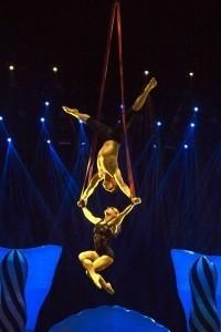 Jonny Grundy - Aerialist / Acrobat