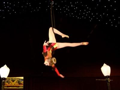 Fern Wilkinson - Aerialist / Acrobat