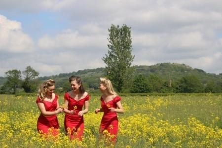The Femmes - Vocal Trio
