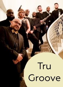 Tru Groove Band - Function / Party Band