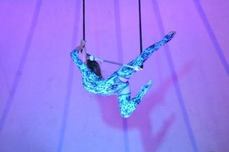 Olena  - Aerialist / Acrobat