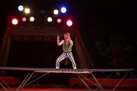 ''COMEDY ACT on TRAMPOLINE - Aerialist / Acrobat