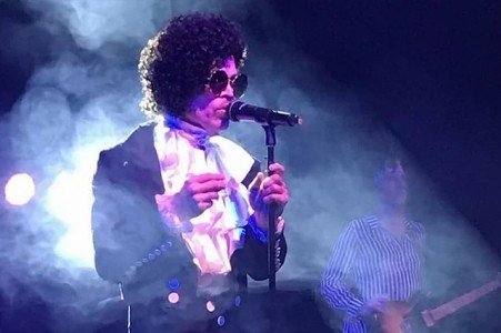 The Prince Project - A Prince and The Revolution Tribute Band image