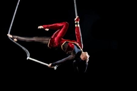 AALIYAH ART - Aerialist / Acrobat