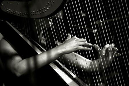 Le Minx - Harpist