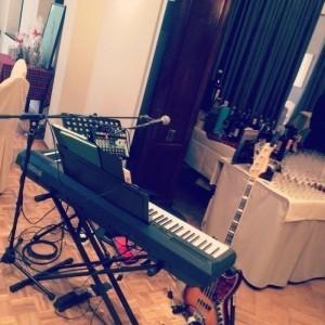 Liss Norman - Multi-Instrumentalist