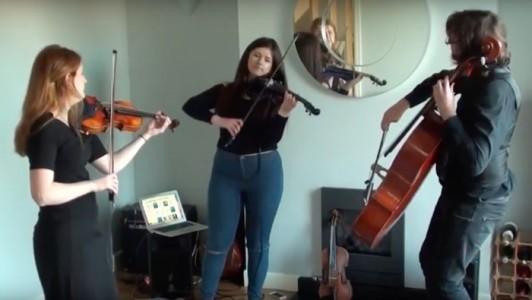 Aderyn String Trio - Violinist