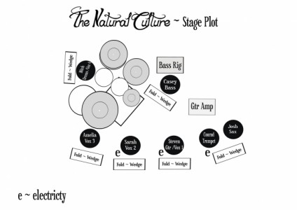 The Natural Culture - Function / Party Band