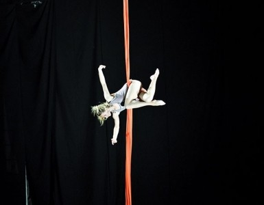 Aerial tissue,aerial ring - Other Artistic Entertainer