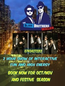 Blues Brothers Wales Tribute Show                                                                                - Elton John Tribute Act