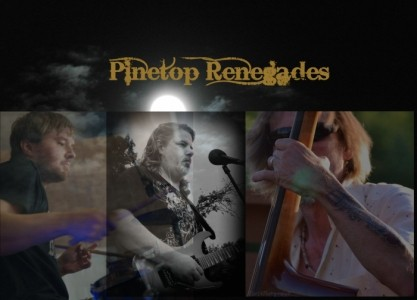 Dave Smith (for solo) Pinetop Renegades (for band) - Country & Western Band