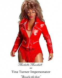 Michelle Marshall's- Ultimate Tina Turner Tribute Show  - Lookalike
