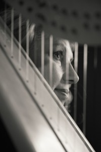 Cherie Gullerud - Harpist