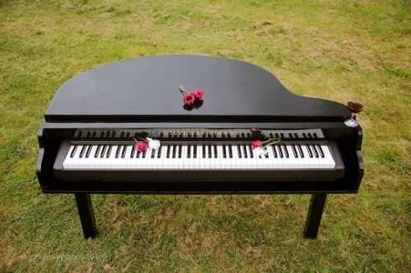 Roger Miners - Pianist / Keyboardist
