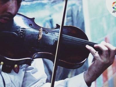 Violinist  - Violinist