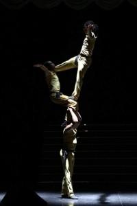 Ashford Chamboko - Aerialist / Acrobat